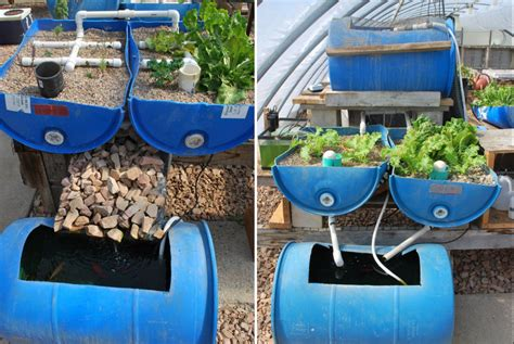 Self Sufficient Backyard - 12 diy aquaponics system for indoor and backyard the