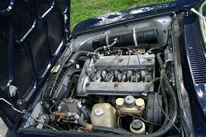 Alfa Romeo Spider Electronic Fuel Injection Gtv Pictures