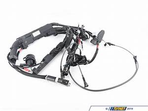 12511748890 - Genuine Bmw Engine Wiring Harness Dme Asc - 12511748890