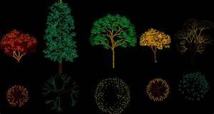 Trees 2D DWG Block for AutoCAD • Designs CAD
