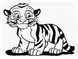 Tiger Coloring Pages Printable Animals Categories sketch template