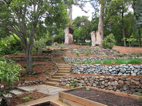 ideas for gardens on a slope oakland sloped garden sloped landscape raised bed and sloped garden