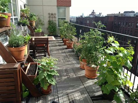 Apartment Herb Garden Balcony System