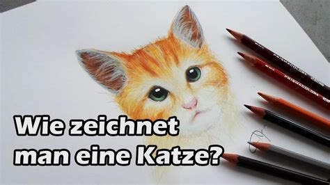 wie zeichnet man eine katze   draw  cat fuer
