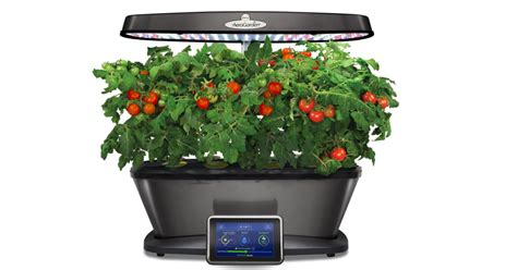 grow ls for indoor plants grow plants indoors with aerogarden a smart growing system