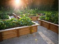 raised garden boxes Tips for Creating Raised Bed Planters | DIY