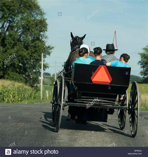 buggy amish family stock  buggy amish family stock
