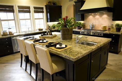 kitchen design ideas gallery pictures of kitchens traditional black kitchen
