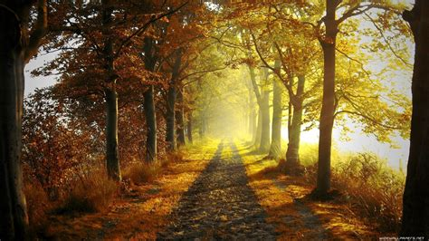 Autumn Wallpapers by Autumn Nature Pictures Net Mod Nature Autumn