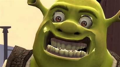 Shrek Gmod Memes Swamp Donkey