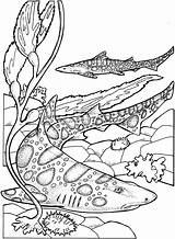 Shark Coloring Pages Printable Ocean Filminspector sketch template