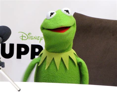 Kermit Meme My Face When - kermit the frog meme face
