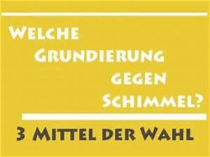 Anti Schimmel Grundierung : anti schimmel farbe wirksamer schutz gegen schimmelpilz ~ Eleganceandgraceweddings.com Haus und Dekorationen