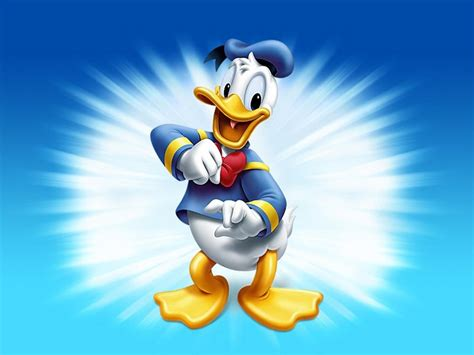 Animated Duck Wallpaper - animated pictures duck animated wallpapers