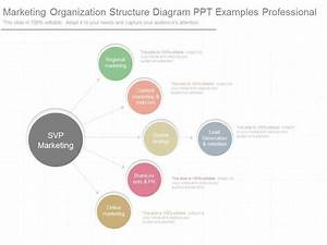 Use Marketing Organization Structure Diagram Ppt Examples