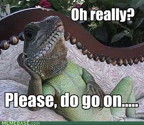 Reptilian Meme - the plastic mancunian reptiles and aliens