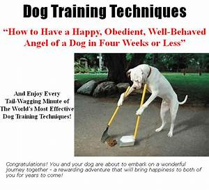 dog training techniques plr ebook With dog training techniques