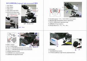 Compound Microscope Light Intensity Knob