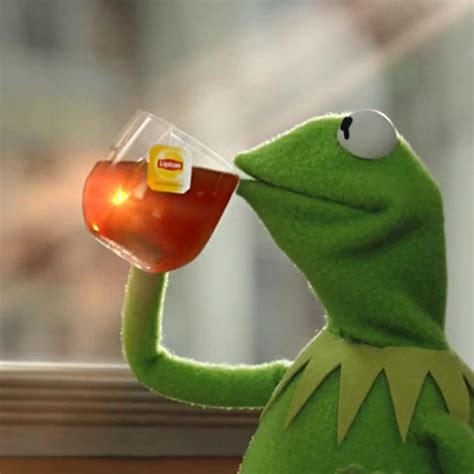 Kermit The Frog Memes - but thats none of my business memes imgflip