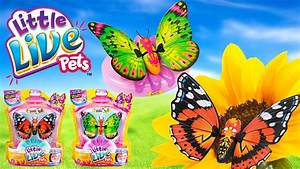 Little Live Pets Butterfly Toys Review