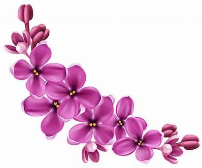 Pink Spring Floral Clipart Decor Transparent Yopriceville