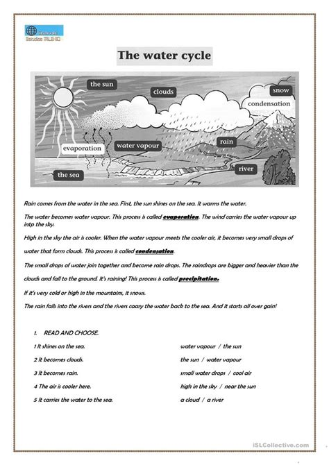 worksheet  water cycle worksheet worksheet fun