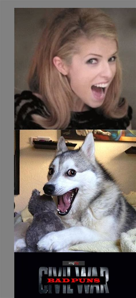 Dog Pun Meme - anna kendrick pun dog www pixshark com images galleries with a bite