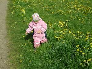 Ameisen Im Gemüsebeet : sommer in lummerland tagesmutter f r l beck lummerland ~ Whattoseeinmadrid.com Haus und Dekorationen
