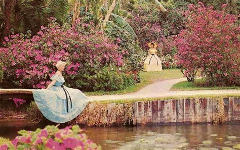 cypress gardens fl florida s cypress gardens at florida s lost tourist