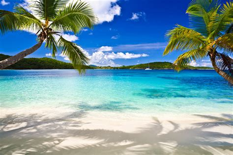 tropical beach image 1000x667 full hd wall