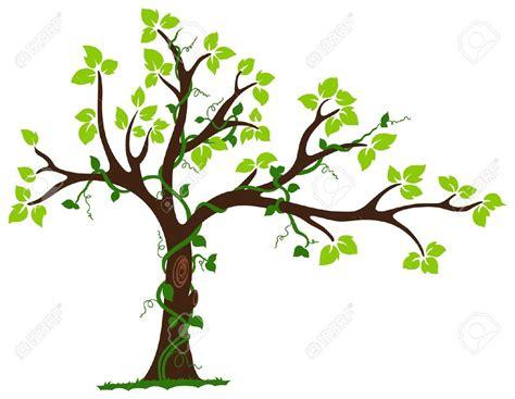 illustrator tree google search tree illustration vine