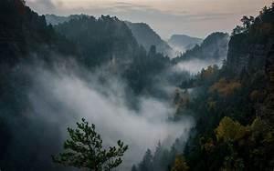 Philipp, Zieger, Mountains, Nature, Forest, Mist