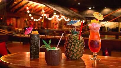 Tiki Cocktails Bars Bar Drinks Cocktail Tonga