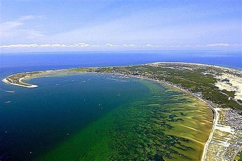 Cape Cod's Water Pollution Problem