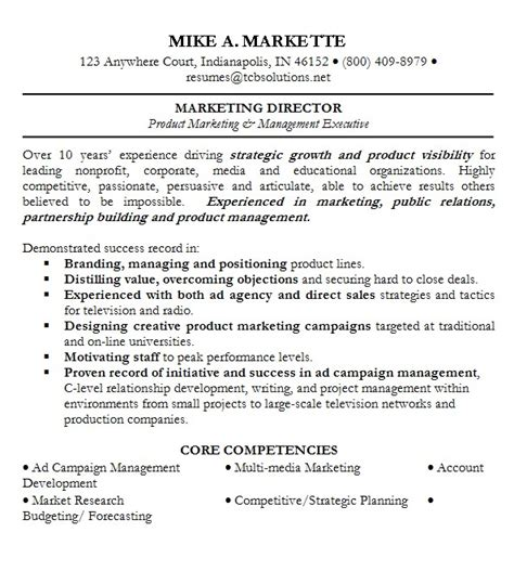 General Resume Summary Sles by Professional Summary For Sales Resume Summary For Sales Professional Mike A Markette