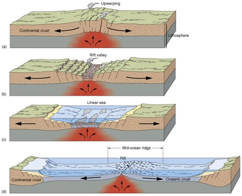 Rift Diagram by Shs Aice Environmental Management 2 1 4 The Lithosphere