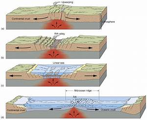 Tectonic Basins