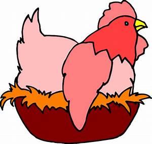 Red Chicken In A Nest Clip Art at Clker.com - vector clip ...