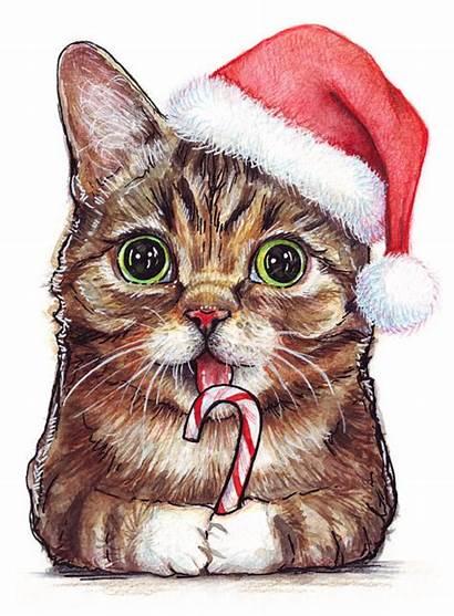 Cat Hat Santa Lil Bub Drawing Transparent