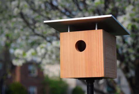 diys    wooden bird feeder guide patterns