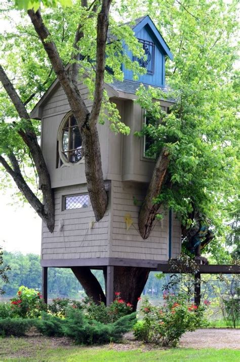 amazing tree houses  wished   growing
