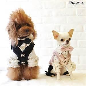 Hip Designer Dog Clothes