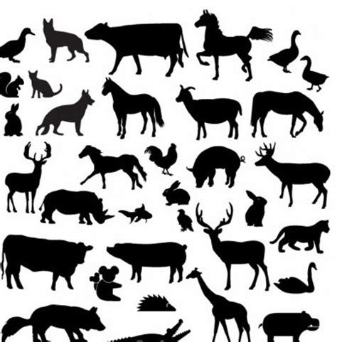 vector farm animal silhouette collection silhouettes