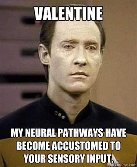 Best Valentine Memes - what are some of the best valentine s day memes quora