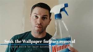 Learn the Ways to Remove Wallpaper and wallpaper removal ...