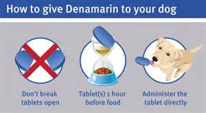 denamarin for cats denamarin high level liver function support for pets