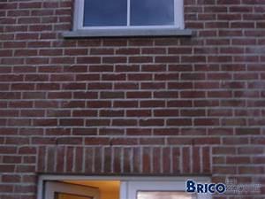 Humidité Mur Extérieur : t che sur mur ext rieur en briques ~ Premium-room.com Idées de Décoration