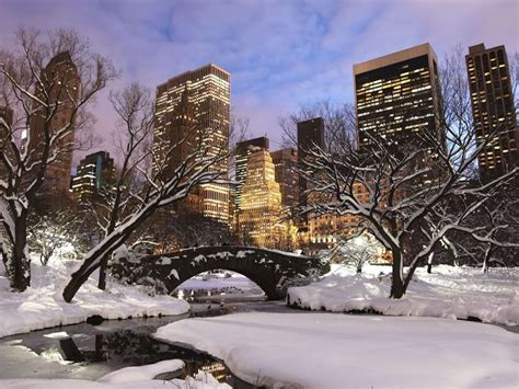 christmas in central park back drops for santa pics 72 hours in new york new york new york state american sky