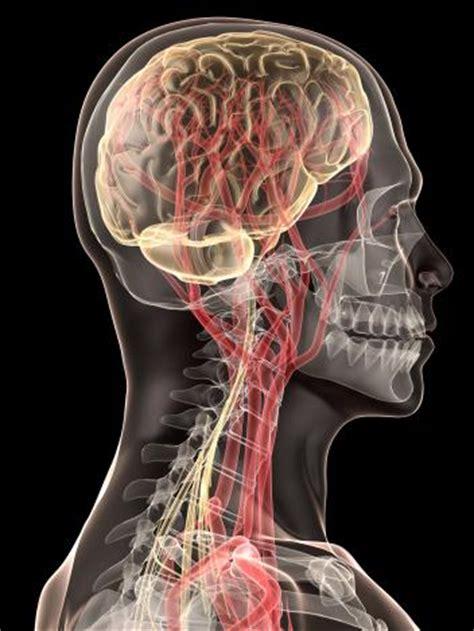 nanoparticles  ferry dopamine   brain offer