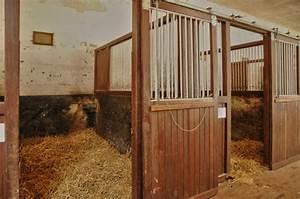 Pferdestall Selber Bauen : pferdestall bauanleitung ~ Frokenaadalensverden.com Haus und Dekorationen